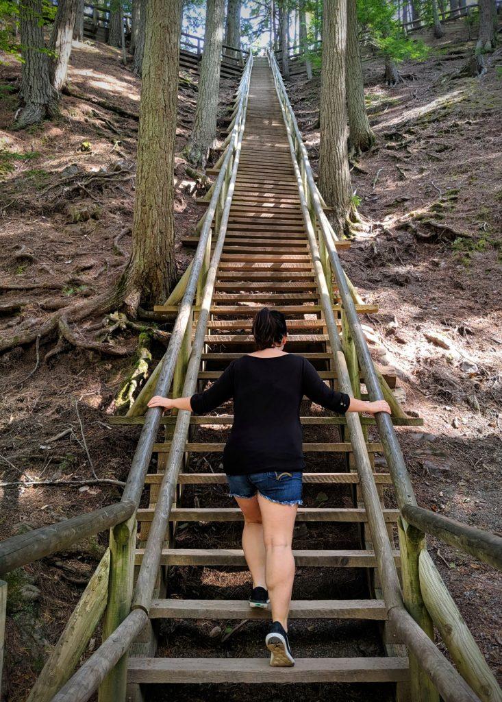climbing Jacob's Ladder in Victoria Park Truro, best hiking trails in Nova Scotia