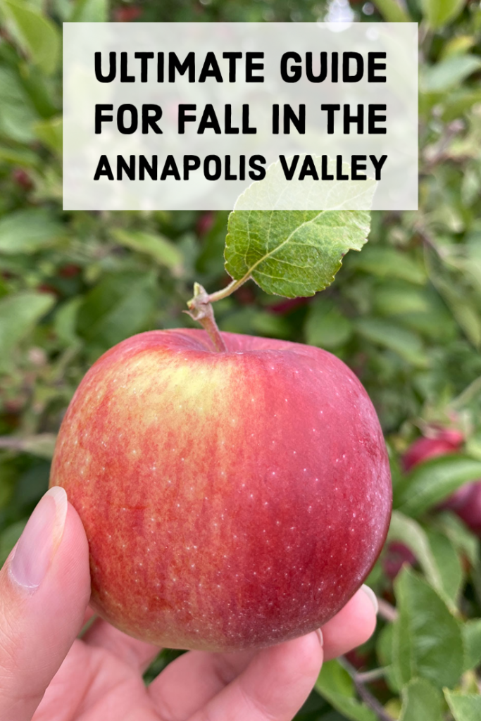 ULTIMATE GUIDE FOR FALL IN THE ANNAPOLIS VALLEY pin