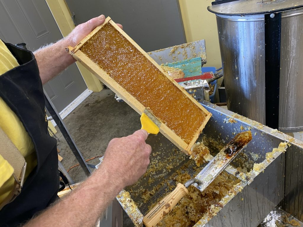learning how honey is made at wood n hive in canning nova scotia in the annapolis valley