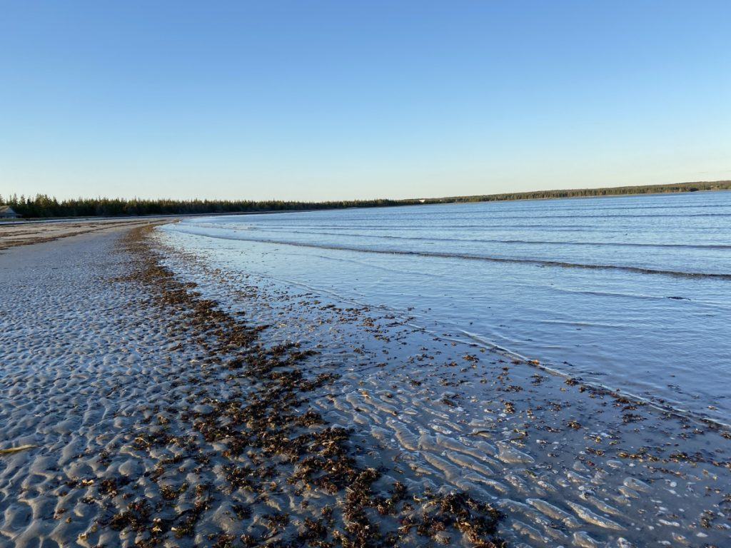 louis head beach shelburne county