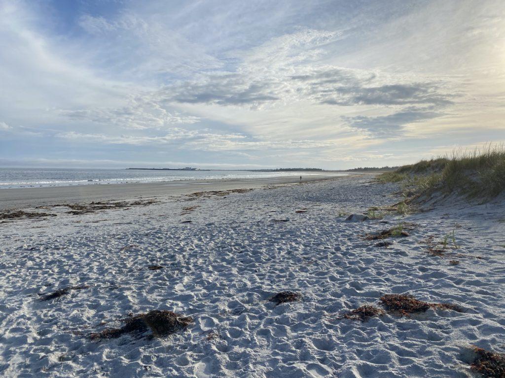 stoney island beach on cape sable island barrington shelburne county