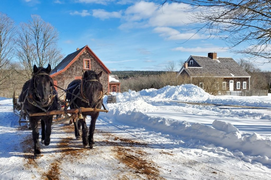 winter sleigh rides at the ross farm museum