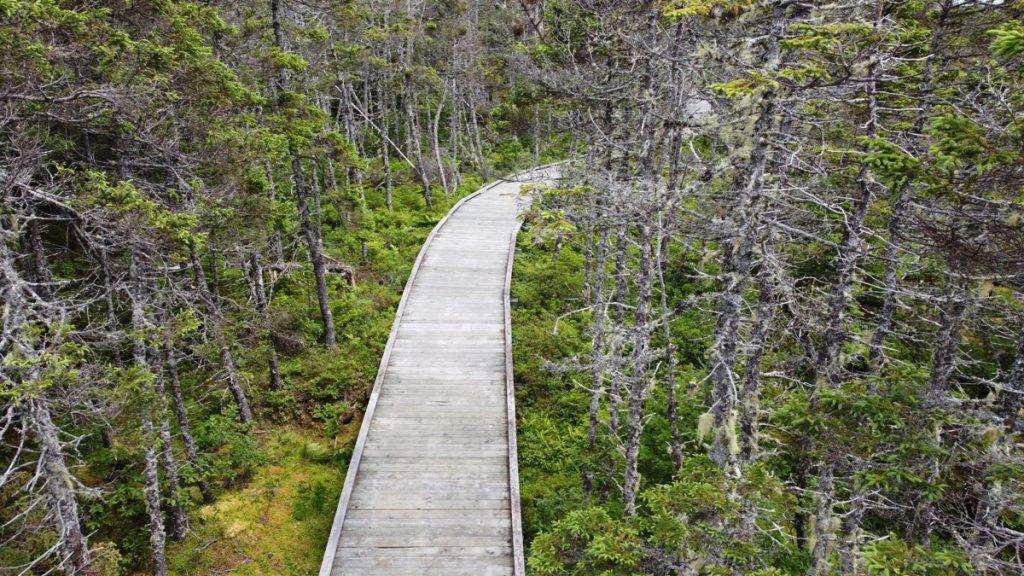 tor bay provincial park boardwalks on the east coast of nova scotia